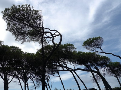 @RobAng 11.09.17, 10:13: Marina di Cecina, 12 m, Cecina Marina, Toscana, Italien (ITA)