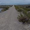 @RobAng 18.09.17, 13:12: Maremma Nationalpark, 0 m, Alberese - Principina a Mare, Toscana, Italien (ITA)