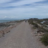 @RobAng 18.09.17, 13:07: Maremma Nationalpark, 1 m, Alberese - Principina a Mare, Toscana, Italien (ITA)