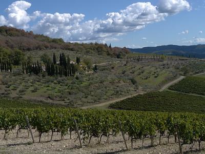 @RobAng 21.09.17, 13:33: Selvole, 563 m, Gaiole In Chianti, Toscana, Italien (ITA)