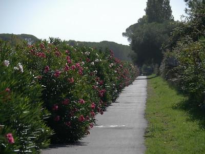@RobAng 12.09.17, 09:49: Roccamare, 8 m, Castiglione Della Pescaia, Toscana, Italien (ITA)