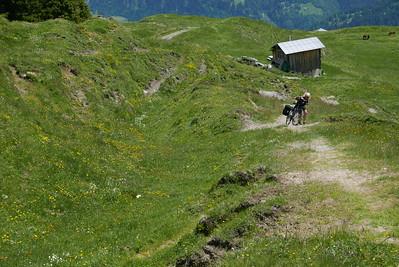 @RobAng 17.06.17, 13:48: Staviala Vedra, 1922 m, Vignogn, Kanton Graubünden, Schweiz (CHE)