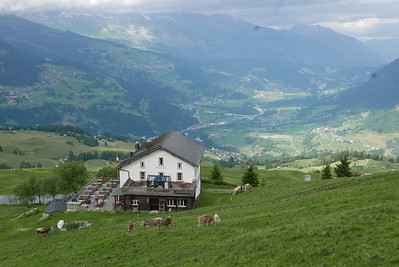 @RobAng 16.06.17, 17:19: Bündner Rigi / Surcuolm, 1642 m, Morissen, Kanton Graubünden, Schweiz (CHE)