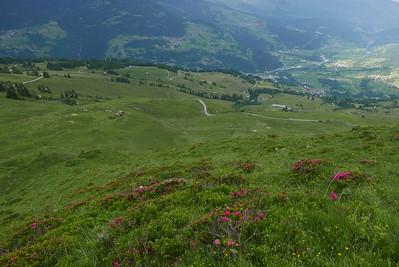 @RobAng 16.06.17, 17:34: Bündner Rigi / Surcuolm, 1747 m, Morissen, Kanton Graubünden, Schweiz (CHE)