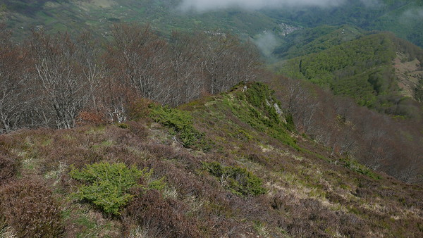 @RobAng 28.04.18, 15:44: Antras, 1314 m, Antras, Occitanie, Frankreich (FRA)
