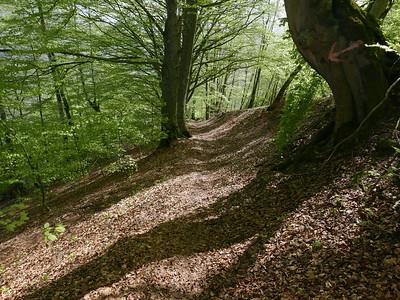 @RobAng 24.04.18, 11:41: Col de Marty (oberhalb Cabanne), 1077 m, Antras bei Sentein, Occitanie (Pyrenäen), Frankreich (FRA)
