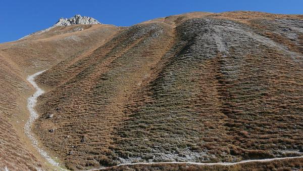 @RobAng 20.10.18, 13:54: P8- Il Fuorn - Val Stabelchod - Margunet - Val da Botsch - P8 Il Fuorn, 2328 m, Nationalpark - Il Fuorn - Lavin, Kanton Graubünden, Schweiz (CHE)