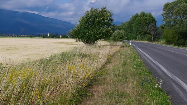 @RobAng 11.07.19, 17:02: Vavrišovo, 730.834 m, Vavrišovo, Žilinský kraj, Slowakei (SVK)
