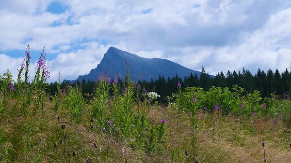 @RobAng 12.07.19, 10:20: Podbanské, 1091.34 m, Podbanské, Žilinský kraj, Slowakei (SVK)