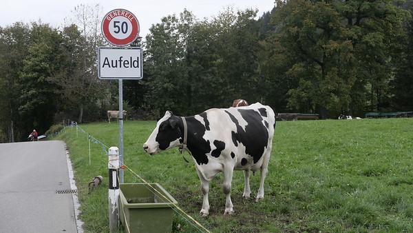 @RobAng 18-Okt.-20 16:39:17: Aufeld, , Mosnang, Sankt Gallen, Schweiz (CH)