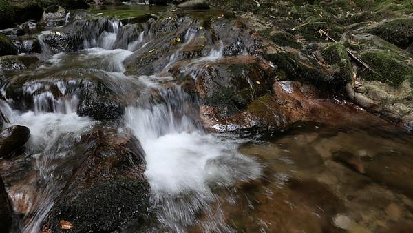 @RobAng 06-Sept.-20 10:33:41: Malschbach, 284 m, Baden-Baden, Baden-Württemberg, Deutschland (DEU)