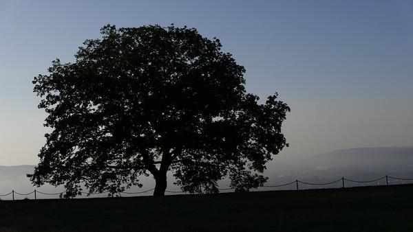 @RobAng 07-Sept.-20 08:04:30: Erpel, 146 m, Erpel, Rheinland-Pfalz, Deutschland (DEU)