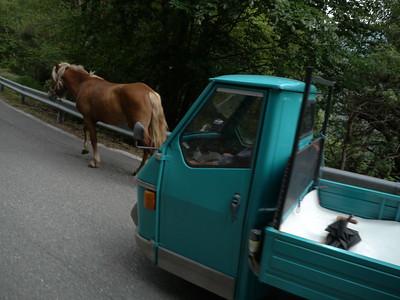 @RobAng 2015 / Passo San Marco / Alpe Olza, Bema, Lombardia, ITA, Italien, 1496 m ü/M, 01.06.2015 17:12:50