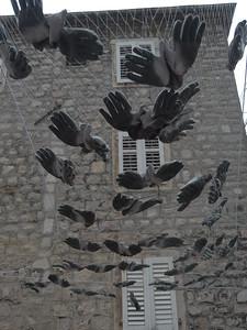 @RobAng Sept. 2014 / Kotor, , Kotor, MNE, Montenegro, 15 m ü/M, 01/09/2014 12:00:18