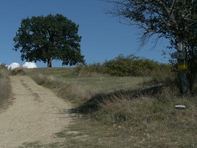 @RobAng Aug. 2014 / Bostajnci, , , SRB, Serbien, 727 m ü/M, 25/08/2014 15:34:47