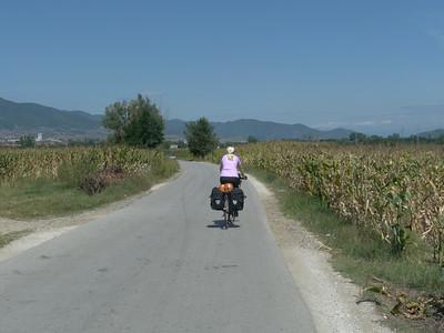 @RobAng Aug. 2014 / Kupinince, , , SRB, Serbien, 381 m ü/M, 25/08/2014 12:57:08