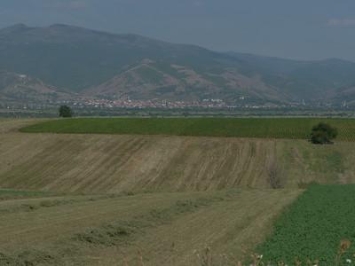 @RobAng Aug. 2014 / ????????, Romanovce, , MKD, Mazedonien, 474 m ü/M, 26/08/2014 09:53:10