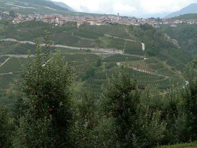 @RobAng Sept. 2014 / Terres, Terres, Trentino-Alto Adige, ITA, Italien, 583 m ü/M, 2014/09/05 13:15:35