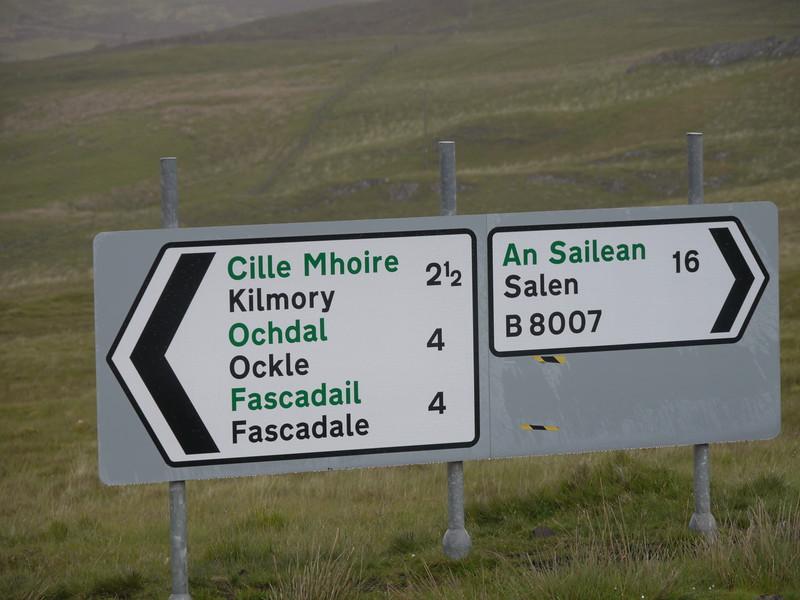 @RobAng Juni 2015 / Kilmory, Kilmory, Scotland, GBR, Großbritannien, 140.291 m ü/M, 2015/06/18 11:09:52