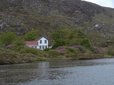 @RobAng Juni 2015 / Tarbert, Harris (Western Isles/Outer Hebridies) /  Na Hearadh agus Ceann a Deas nan, Scotland, GBR, Grossbritanien / Great Britain, 79 m ü/M, 2015/06/21 11:35:51