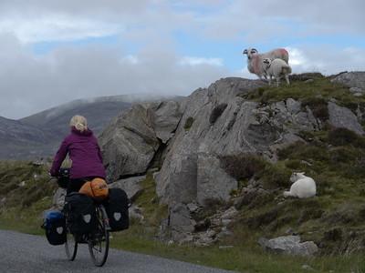 @RobAng Juni 2015 / Tarbert, Harris (Western Isles/Outer Hebridies) /  Na Hearadh agus Ceann a Deas nan, Scotland, GBR, Grossbritanien / Great Britain, 84 m ü/M, 2015/06/21 11:39:40