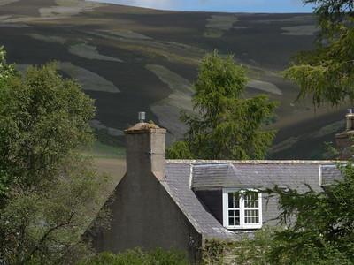 @RobAng Juni 2015 / Tornahaish, Aboyne, Upper Deeside and Donsid, Scotland, GBR, Großbritannien, 385 m ü/M, 2015/06/27 11:59:02