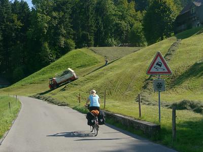 @RobAng 2012 / Kappel, Wattwil, Kanton St. Gallen, CHE, Schweiz, 619 m ü/M, 01.08.2012 16:28:46