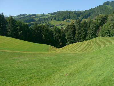 @RobAng 2012 / Krummenau, Krummenau, Kanton St. Gallen, CHE, Schweiz, 715 m ü/M, 01.08.2012 17:01:46