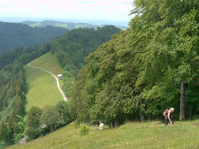 PFINGST-SPAZIERGANG AUFS SCHNEBELHORN: Orüti bei Steg - Tierhag - Schnebelhorn - Orüti. © RobAng 2011. Burenboden, Dreien, Kanton St. Gallen, Schweiz, 1245 mm