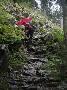 @RobAng Sept. 2013 / Balmenegg, Bristen, Kanton Uri, CHE, Schweiz, 1150 m ü/M, 08.09.2013 12:00:57