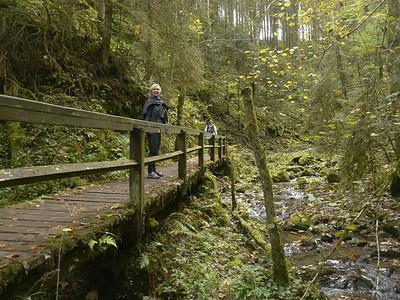 @RobAng, Okt. 2013 / Tiefental, Bonndorf im Schwarzwald, Baden-Württemberg, DEU, Deutschland, 764 m ü/M, 2013/10/13 14:40:53