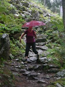 @RobAng Sept. 2013 / Balmenegg, Bristen, Kanton Uri, CHE, Schweiz, 1150 m ü/M, 08.09.2013 12:01:11