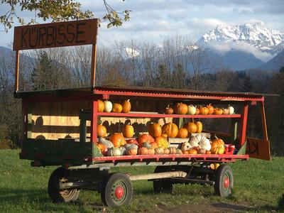 @RobAng, Nov. 2013 / Hüllistein, Rapperswil SG, Kanton St. Gallen, CHE, Schweiz, 478 m ü/M, 2013/11/09 17:03:34