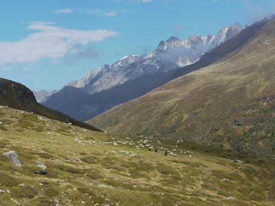 © RobAng 2010 -- Gr. St. Bernard, Valais, Switzerland - 1972.95 m