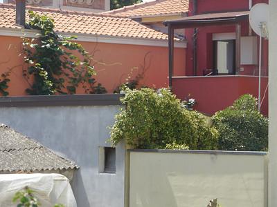 @RobAng, Juni  2013 / Marebello, Bellariva, Emilia-Romagna, ITA, Italien, 4 m ü/M, 2013/06/13 11:46:54