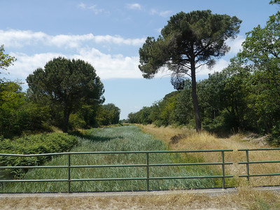 @RobAng, Juni  2013 / Borgo Fosso Ghiaia, Fosso Ghiaia, Emilia-Romagna, ITA, Italien, 2 m ü/M, 2013/06/12 12:25:16