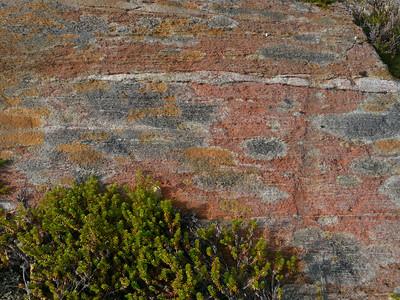 @RobAng 2012 / Kvalnes, Skjerstad, Nordland, NOR, Norwegen, 260 m ü/M, 18/09/2012 15:03:28