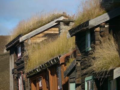@RobAng 2012 / Røros, Røros, Sor-Trondelag, NOR, Norwegen, 665 m ü/M, 21/09/2012 16:59:26