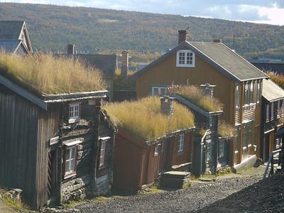 @RobAng 2012 / Røros, Røros, Sor-Trondelag, NOR, Norwegen, 680 m ü/M, 21/09/2012 16:49:24