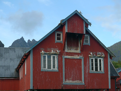Velotour Lofoten-Vesterålen-Narvik  / @RobAng 2012  / Å i Lofoten, Sørvågen, Nordland, Lofoten, NOR, Norwegen, 0 m ü/M, 09/09/2012 10:18:57