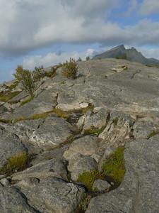 auf der Küstenstrasse von Mo I Rana nach Bodø / @RobAng 2012 / Selnes, Stokkvågen, Nordland, NOR, Norwegen, 200 m ü/M, 06.09.2012 15:06:33
