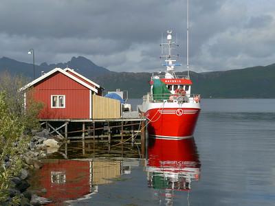 auf der Küstenstrasse von Mo I Rana nach Bodø / @RobAng 2012 / Kilboghamn, Sørfjorden, Nordland, NOR, Norwegen, 20 m ü/M, 06.09.2012 15:42:34