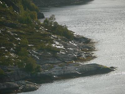 auf der Küstenstrasse von Mo I Rana nach Bodø / @RobAng 2012 / Skålsvik, Nygårdsjøen, Nordland, NOR, Norwegen, 1 m ü/M, 07.09.2012 08:23:30