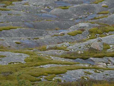auf der Küstenstrasse von Mo I Rana nach Bodø / @RobAng 2012 / Flostrand, Utskarpen, Nordland, NOR, Norwegen, 53.1429 m ü/M, 06.09.2012 14:37:47