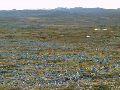 @RobAng 2012 / Brettninga, Friies-Weg von Ringebu nach Atna, Oppland, NOR, Norwegen, 1187 m ü/M, 03.09.2012 19:05:52