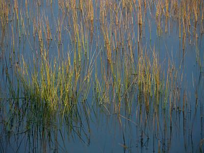 @RobAng 2012 / Odlo, Friies-Weg von Ringebu nach Atna, Oppland, NOR, Norwegen, 1080 m ü/M, 03.09.2012 18:47:23