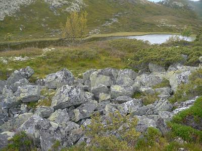 @RobAng 2012 / Peer-Gynt-Weg (Mautstrasse durch, Svatsum, Oppland, NOR, Norwegen, 1020 m ü/M, 03/09/2012 14:44:54