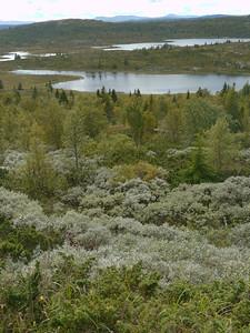 @RobAng 2012 / Peer-Gynt-Weg (Mautstrasse durch, Svatsum, Oppland, NOR, Norwegen, 980 m ü/M, 03/09/2012 14:29:25