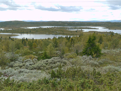 @RobAng 2012 / Peer-Gynt-Weg (Mautstrasse durch, Svatsum, Oppland, NOR, Norwegen, 980 m ü/M, 03/09/2012 14:26:50