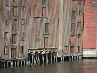 @RobAng 2012 / Trondheim, Trondheim, Sor-Trondelag, NOR, Norwegen, 40 m ü/M, 20/09/2012 13:29:29